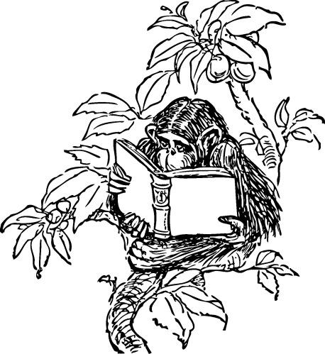 scimmia che legge.jpg